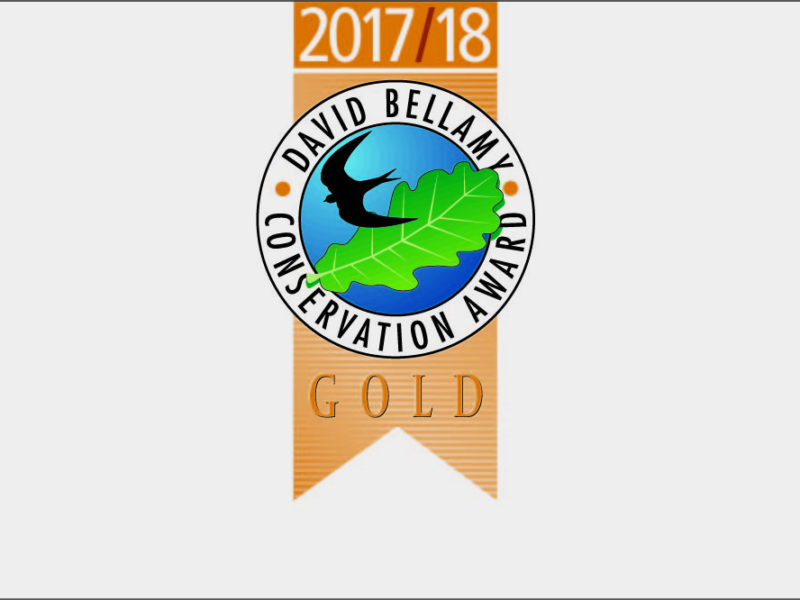 David Bellamy Conservation Award - Gold